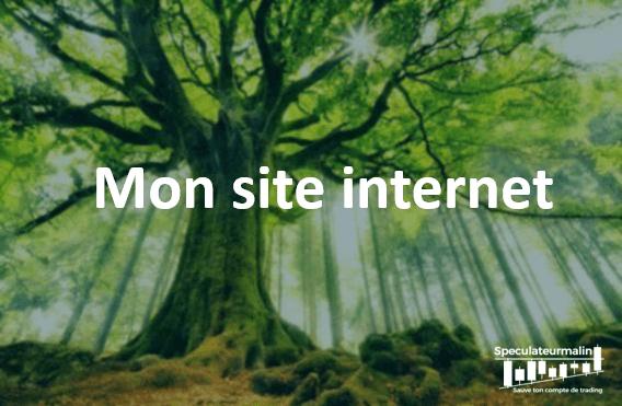 Pourquoi avoir crée ce site internet?