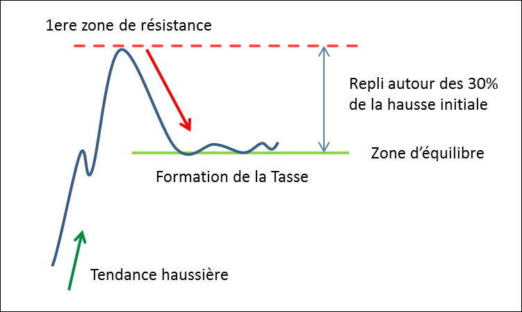 Formation de la Tasse