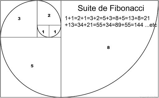 Spiral Fibonacci