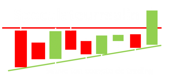 Logo du site internet speculateurmalin.fr