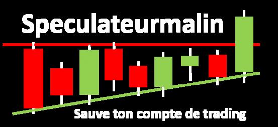 Logo du site internet speculateurmalin.fr